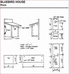mountain bluebird house plans unique bird house plans for bluebirds new home plans design