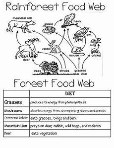 science worksheets websites 12458 food web activities fourth and fifth grade science by smithscience