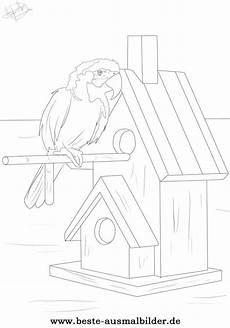 Ausmalbilder Kostenlos Zum Ausdrucken Papageien Ausmalbild Vogel Ausmalbild Papagei Und Anderen