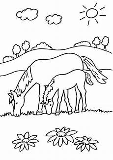 kostenlose malvorlage pferde stute und ihr fohlen