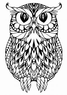 Gratis Malvorlagen Eulen Owl Coloring Pages For Adults Free Detailed Owl Coloring