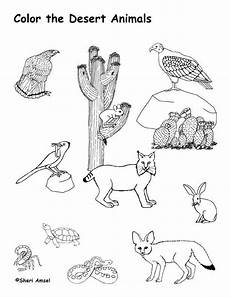 animals in the desert coloring pages 17026 78 images about desert theme on cactus craft classroom and cactus