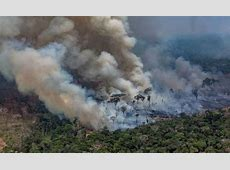 amazon rainforest fires 2019