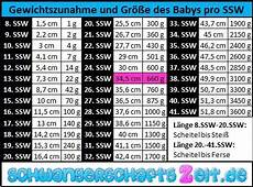 gewichtszunahme in der schwangerschaft 25 ssw bauch entwicklung gewichtszunahme