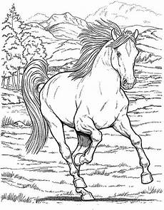 Malvorlage Pferd A4 Coloring Pages For Printable Colouring
