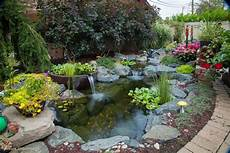 top 5 water garden supplies to keep year around