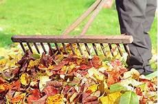 gartenarbeit im oktober der gartenkalender f 252 r das ganze jahr universal