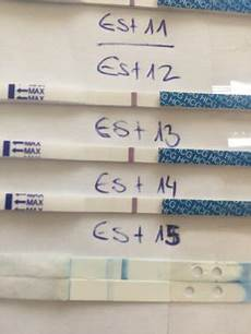 Schwangerschaftstest Vor Periode - 10 tage 252 berf 228 llig ziehen im unterleib periode 9 tage