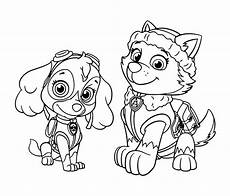 Gratis Malvorlagen Paw Patrol New Zuma Coloring Pages New Paw Patrol Rocky And Page