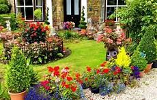 Fleurs Originales Jardin