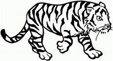Malvorlagen Tiger In The House Tiger Malvorlagen Malvorlagen Fur Kinder