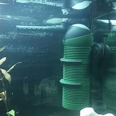 ist die pumpe richtig an der stelle aquarium noob