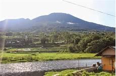 Ekologi Tumbuhan 116b Ekosistem Pegunungan Tinggi
