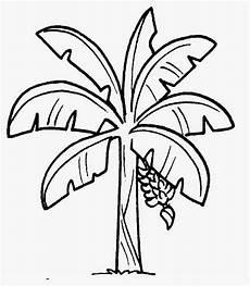 Dunia Sekolah Gambar Hitam Putih Drawing Bunga Pokok