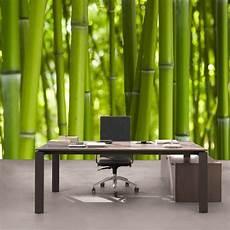 bambus tapete kiss fototapeten zu besten preisen fototapete dream