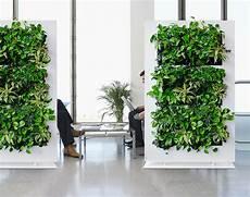 Living Green Divider Installation Sarasota Ta