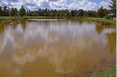 managing muddy ponds panhandle agriculture