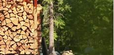 Holz Als Raummeter Ster Sch 252 Ttraummeter Festmeter