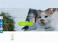 weenect cats une balise gps pour garder le contact avec