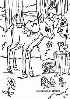ausmalbilder tiere im wald kostenlos malvorlagen
