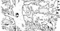 Malvorlagen Kinder Wald Als Pdf Natur Wald Tiere Guckes