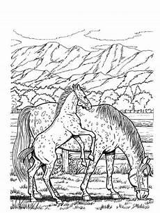 Malen Nach Zahlen Malvorlagen Kostenlos Pferde Pin Auf Pferde