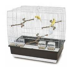 imac gabbie uccelli gabbie per uccelli