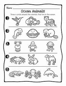 animals habits worksheets 13897 animal habitats science activity and worksheets the