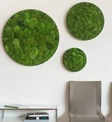 moosbilder für die wand kugelmoosbild rund im greenbop shop kaufen in