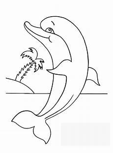 ausmalbilder delphin zum ausdrucken malvorlagentv