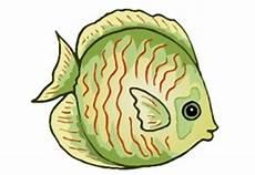 ausmalbilder tiere fische