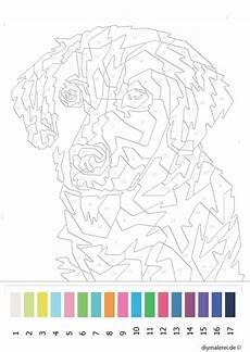 malen nach zahlen hund zum ausdrucken