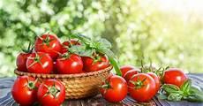 Wie Gesund Sind Tomaten - darum sind tomaten so gesund mein sch 246 ner garten