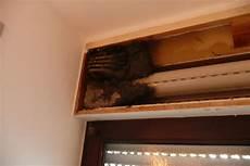 wespennest im rolladenkasten entfernen freiwillige feuerwehr wurmlingen insekteneinsatz