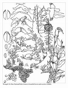coloring pages ecosystem animals 16973 coloring pages forest search coloring pictures of animals forest coloring