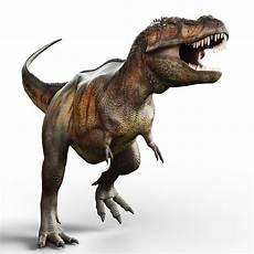tyrannosaurus rex report builder