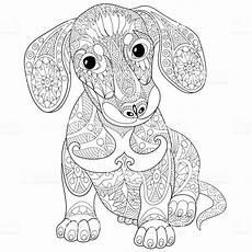 Ausmalbilder Hunde Erwachsene Dachshund Puppy Symbol Of 2018 New Year