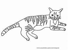 Katzen Malvorlagen Name Ausmalbilder Gratis Katzen Ausmalbilder