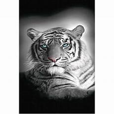 grand drap de plage tigre du bengale cavacado