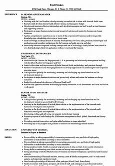 senior audit manager resume sles velvet