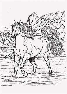 ausmalbild regenbogen pferd tiffanylovesbooks