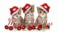 christmas holiday mynuttydubai
