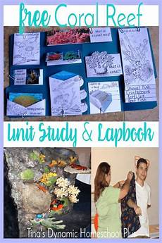 coral reef unit study lapbook and ideas homeschool ocean lesson plans