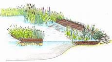 Pflanzen Am Teich Warum Ist Xylit So Wirksam F 252 R Die Wasserreinigung In Gartenteichen