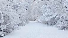 White Winter Background 14 best winter pictures