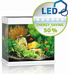 Juwel Lido 120 Led Aquarium Olibetta Online Shop