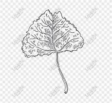 Gambar Dekoratif Hitam Putih Tumbuhan Gambar Dekoratif