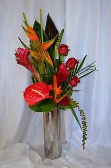 images gratuites fleur vase tropical flore