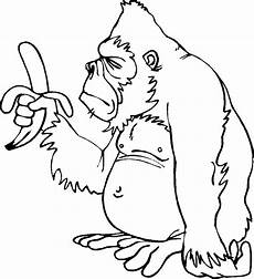 Malvorlagen Tiere Affen Monkey Coloring Pages