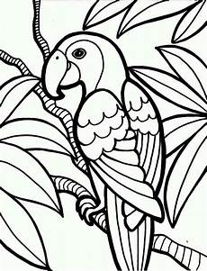 jungle parrot coloring page print